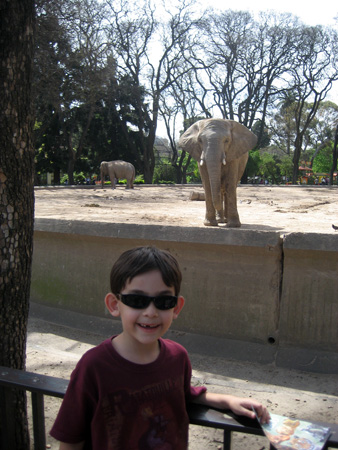 Pose em frente ao elefante...