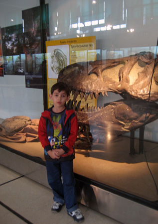 O cabeção do tiranossauro rex...