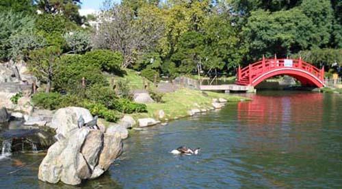 Revisitando o Jardín Japonés