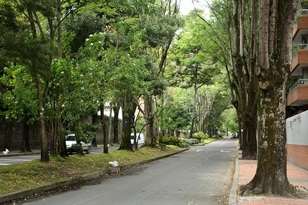 Rua atrás do hotel - Zona Rosa