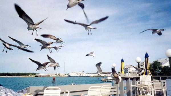 Fundo do baú: Key West