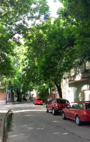As ruas circulares